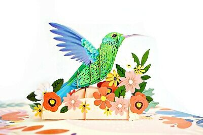 3D Pop Up Humming Bird Greeting Card Birthday Father's Day Anniversary Love