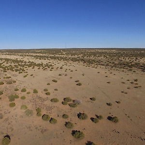 1-25 acre up for auction in Apache County AZ NO RESERVE