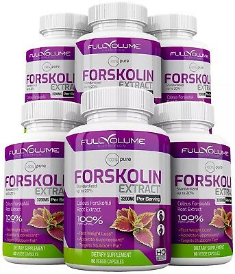 6 x Forskolin Maximum Strength 100 Pure 3000mg Rapid Results Forskolin Extract