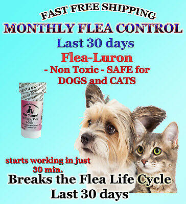1 Year Supply MONTHLY Flea Control For DOGS and CATS 2-30Lbs-165 Mg 12 Capsules