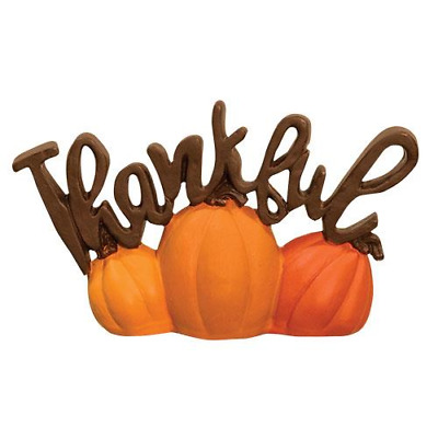 Thankful w Pumpkins Blossom Bucket  Fall Resin Thanksgiving 5 x 2-75