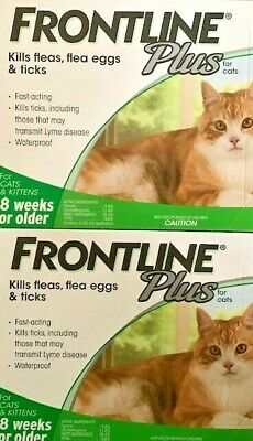 Frontline Plus For Cats 6 MONTHS Doses Flea - Tick Control