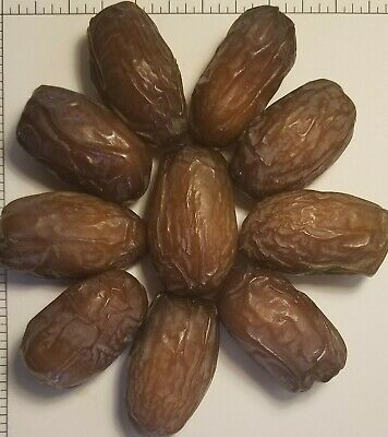 SALE 11 lbs 2019 Soft Medjool Dates - Aceves Farms California