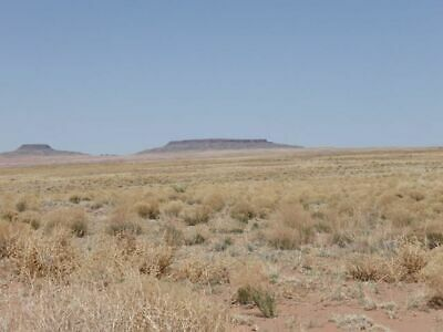 40 ACRES NORTHERN ARIZONA RANCH - NEXT TO PETRIFIED FOREST NATL PARK - 135mo