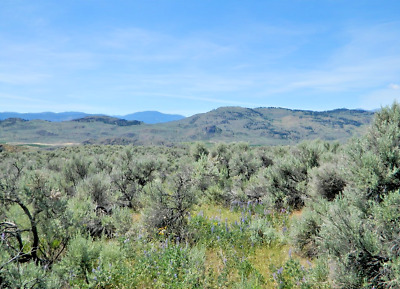 10-08 ACRE RANCH OROVILLE OKANOGAN COUNTY WASHINGTON POWER SUBDIVISION VIEWS