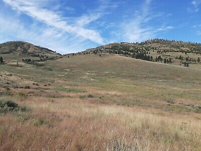 19 ACRE RANCH TONASKET WASHINGTON COUNTY MAINTAINED ROAD ACCESS