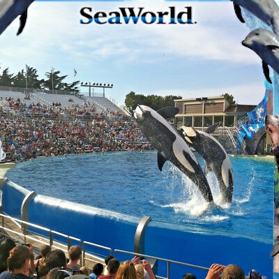 SEAWORLD SAN DIEGO TICKET ADMISSION PROMO DISCOUNT TOOL AND ALL DAY DINING DEAL