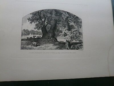 J SLEIGH THE MONARCH OF THE FOREST  ORIGINAL ETCHING   1861 DAY - SON LONDON