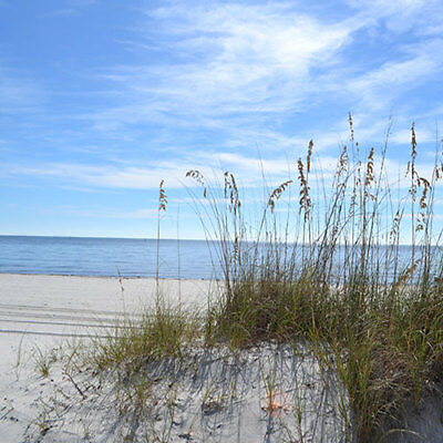 Gulf Coast Land-0 Financing-Double Lot-Payoff get discount or 12 months 2 pay