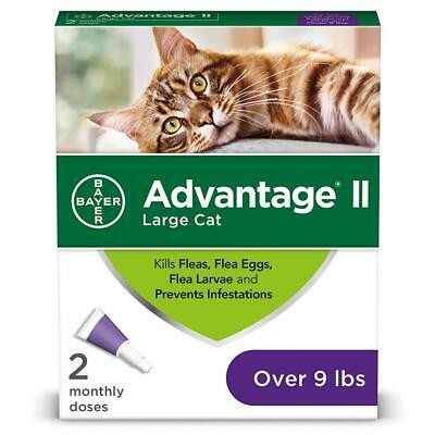 Bayer Advantage II Flea Prevention for Large Cats Over 9 lbs 9 lb