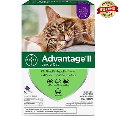 Bayer Advantage II for Large Cats over 9 Lbs - 6 Pack -  FREE SHIP 2 DAY FEDEX