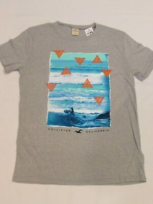 NEW MEN'S HOLLISTER CO- SHORT SLEEVE GRAPHIC T-SHIRT GREY PICK A SIZE