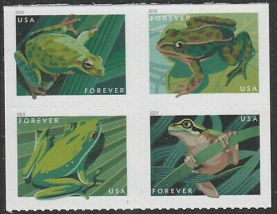 US 5395-5398 5398a Frogs forever block set 4 stamps MNH 2019