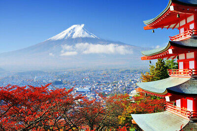 8-Day  6-Night Vacation to Japan from Los Angeles w Airfares Hotels