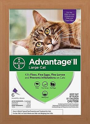 Bayer Advantage II Flea Treatment for Large Cats Over 9 lbs - 6 Pack