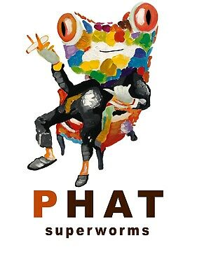 500 Large 1-5-2 Live Superworms - Free Shipping - Phat Feeders
