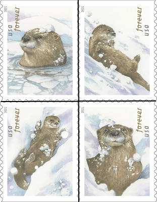 5648  5651 2021 Otters in the Snow Singles set4 - MNH Ships after Oct 12