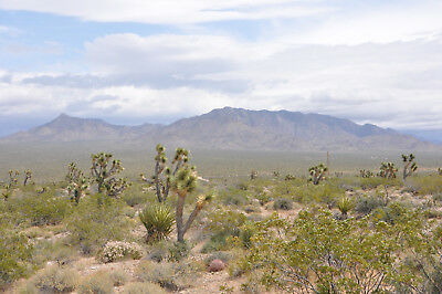 1 acre lot in Mohave County Meadview Arizona - Cash or 100 down - 100month