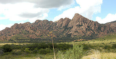1 acre lot in Cochise County Sunsites Arizona - Cash or 75 down - 100month
