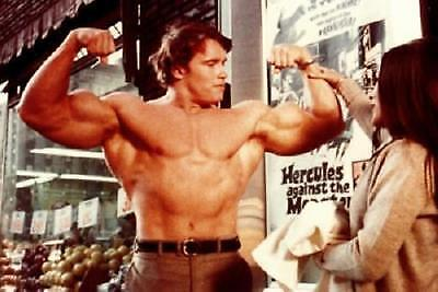 Arnold Schwarzenegger 70S Muscle Building AD Poster 11x17 Mini Poster