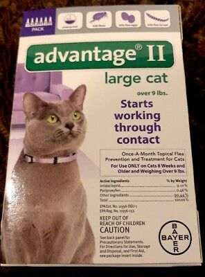 Bayer Advantage II Cat Flea Prevention - Treatment for Large Cats 6 doses