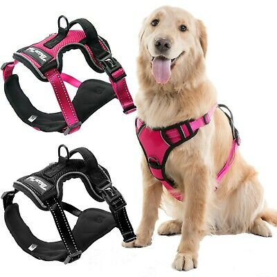 Adjustable No Pull Dog Pet Vest Harness Leash Durable Safety Control Front Click