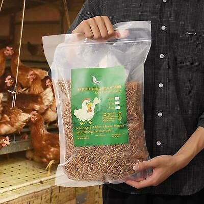 Non-GMO Dried Mealworms Fit Birds Chickens Fish Reptile Turtles 11 5 2 lbs USA