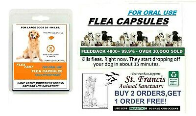 St- Francis Animal Rescue FLEA Killer control LARGE Dogs  16 doses works FAST