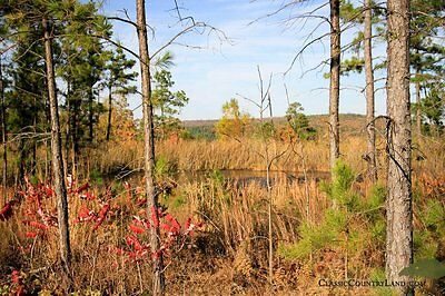 83-1 ACRES OF OKLAHOMA LAND WITH WATER GREAT FOR HUNTING CAMPING AND MORE