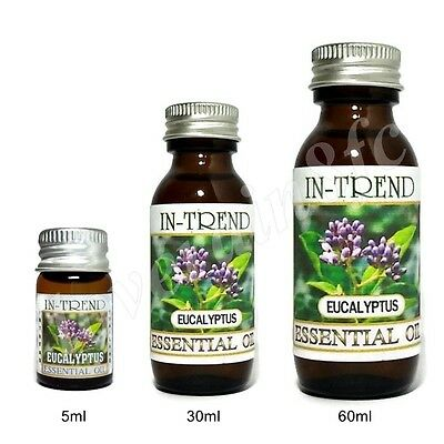 Eucalyptus Essential Oil 100 Pure Many Sizes Free Shipping