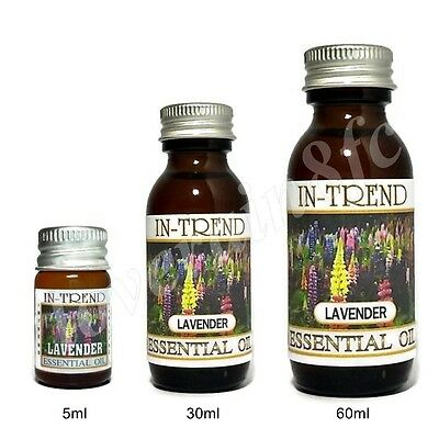 Lavender Essential Oil 100 Pure Many Sizes Free Shipping
