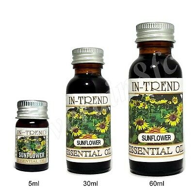 Sunflower Essential Oil 100 Pure Many Sizes Free Shipping