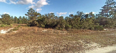 VACANT LOT FORECLOSURE READY NO RESERVE BUILDABLE UTILITIES ROAD FRONTAGE