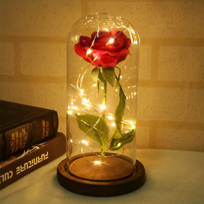 Enchanted Forever Rose Flower In Glass LED Light Lamp Wedding Valentines Day