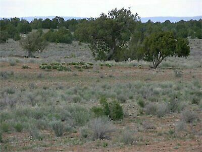 5-28 acre Ranchette in New Mexico- Perfect for Horses