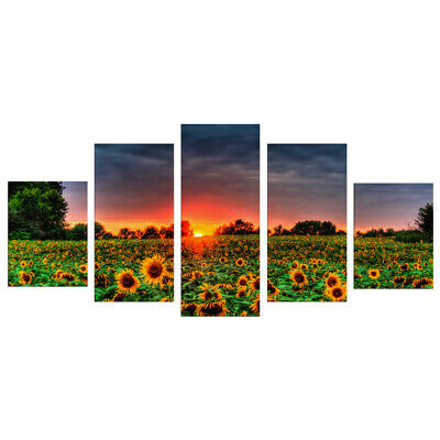 5Pcs Sunflower Art Oil Painting Canvas Picture Home Office Wall Decor Decoration