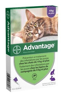 Bayer ADVANTAGE PURPLE for Cats Over 9 lbs 6-Pack