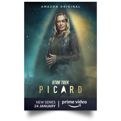 Star Trek Picard TV Character Movie Poster Size 16x24 24x36 2