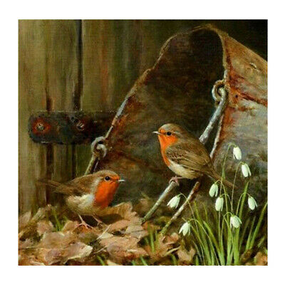 5D DIY Cute Bird Diamond Painting Full Drill Art Home Decor Embroidery Kit Craft