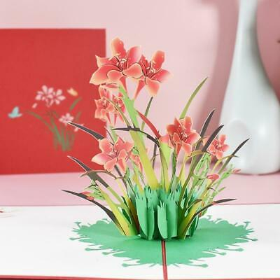3D Pop-Up Daffodil Greeting Card for Birthday Mothers Fathers Day Wedding