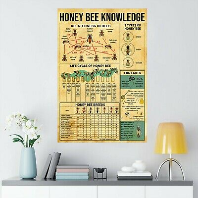 Honey Bee Knowledge Poster No Frame Wall Decor For Bee Lovers Gift Poster