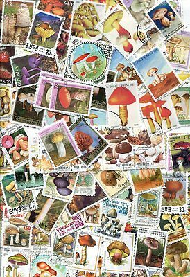 EXOTIC COLLECTION OF 100 MUSHROOM STAMPS - NO DUPLICATES - VERY COLORFUL