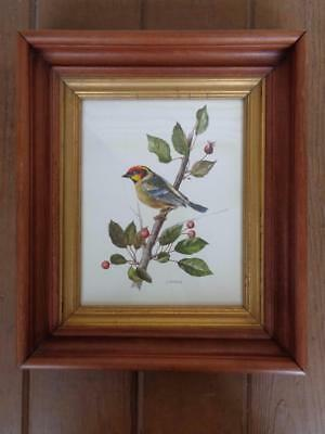 VINTAGE BIRD PRINT BY A- MARLIN FRAMED BIRD PICTURE SIGNED BY ARTIST