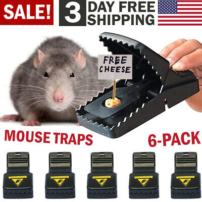 6 Pack Mouse Traps Mice Killer Mouse Small Rat Snap Trap Rodent Reusable Catcher