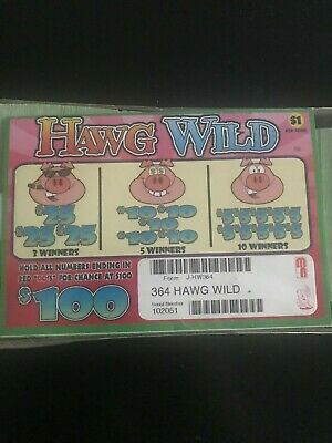 Hawg Wild 1 Window Pull Tab 364 Tickets Payout 275 Free Ship USA