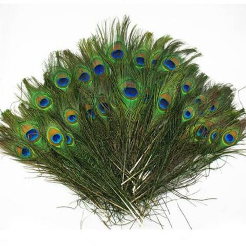 20PCS LOTS REAL NATURAL PEACOCK TAIL EYES FEATHERS 8 12 INCHES 23 30CM HS
