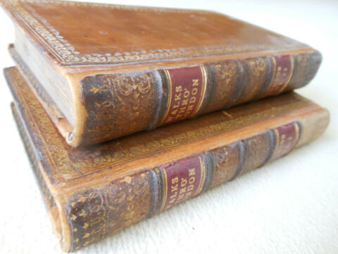 ORIGINAL DAVID HUGHSON 1817 VOL I VOL II WALKS THROUGH LONDON LEDER