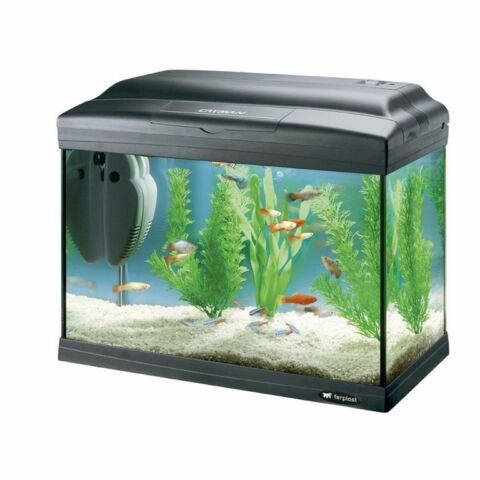 FERPLAST 65040817 AQUARIUM CAYMAN 40 PLUS 41 5 X 21 5 X 34 CM 21 LITER I B WARE