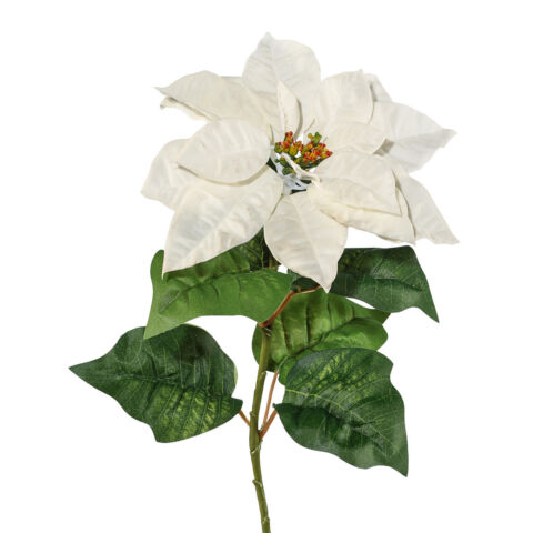 KUNSTPFLANZE POINSETTIE WEIHNACHTSSTERN 2ER SET FARBE CREME H HE CA 70 CM
