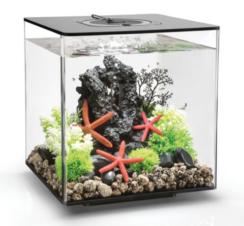 BIORB NANO AQUARIUM KOMPLETT SET CUBE 30 LED SCHWARZ 32 X 32 X 34 5 CM